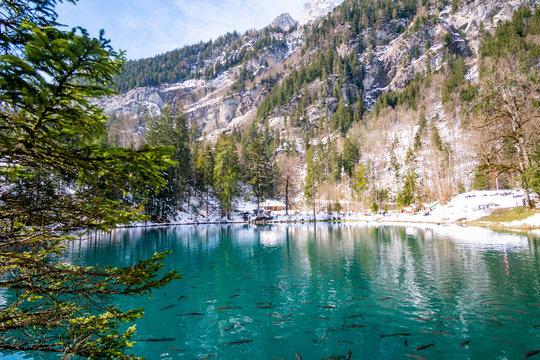 Blausee im frühling mit Schnee
