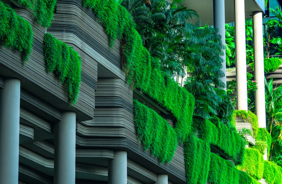 Eco friendly building with vertical garden in modern city. Green plant and tree forest and ivy on facade on sustainable building. Energy saving architecture with vertical garden. Clean environment.
