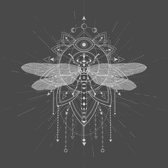 Vector illustration with hand drawn Dragonfly and Sacred symbol LOTUS on black background. Abstract mystic sign. White linear shape.