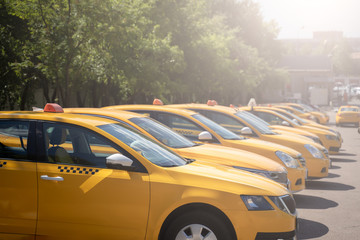 Photo of several yellow taxi on street in summer afternoon