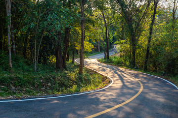 Road in the Forest, Thung Salaeng Luang National Park, Thailand Fototapete