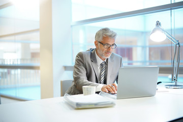Mature businessman working in contemporary office