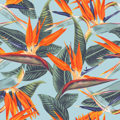 Seamless pattern with tropical flowers and leaves of Strelitzia Reginae. Realistic style, hand drawn, vector, bright colours. Background for prints, fabric, wallpapers, wrapping paper.