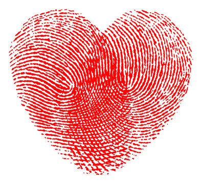 Vector illustration of a red heart made with two fingerprints isolated on white background. High detailed image - Editable vector (eps) file available.