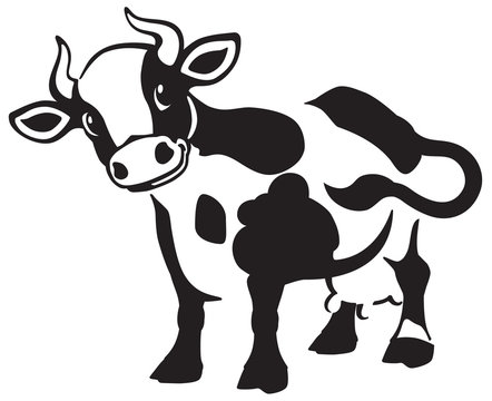 cartoon spotted cow . Black and white icon, logo , emblem . Isolated vector illustration