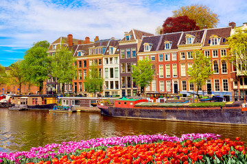 Cityscape view of the canal of Amsterdam in summer with a blue sky and traditional old houses....