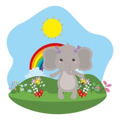 Elephant cartoon design vector illustrator