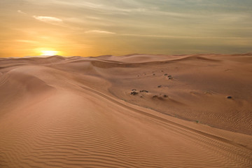 Sand dessert sunset landscape view, UAE