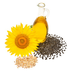 Fototapete - Creative idea flower of a sunflower, seeds and oil glass bottle isolated on white background. Food, cooking, farm work. Agriculture, organic. Flat lay, top view