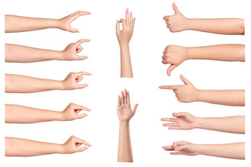 set of  woman hands isolated on white background
