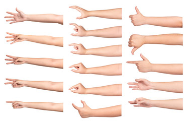 Set of woman hands with different gestures isolated on white
