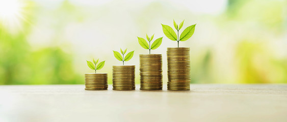 money stack with plant growing. finance and accounting concept Fototapete