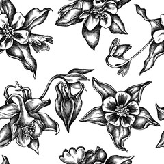 Seamless pattern with black and white aquilegia
