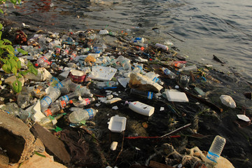 Plastic pollution on beach and in sea