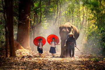 Community life. School children and elephants. Student little asian are raising elephants, Tha Tum District, Surin, Thailand.