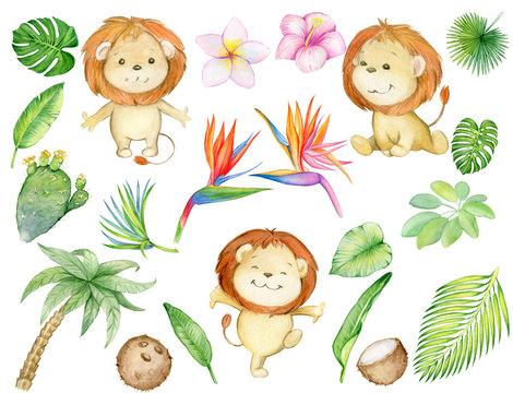 tropics, lion cub, tropical plants, watercolor set.