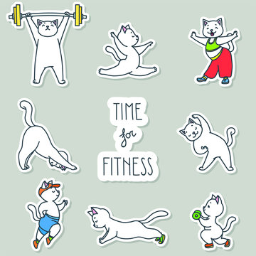 Time for fitness. Stickers set. Illustration of cute white cats doing exercises isolated on white background. Vector 8 EPS.
