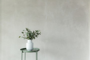 white vase and tree in white room studio , minimal style background and copy space .