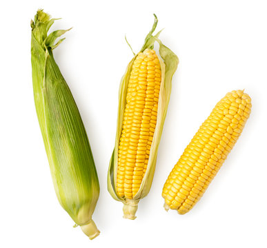 Corn cob in leaves and peeled on a white. The view of the top.