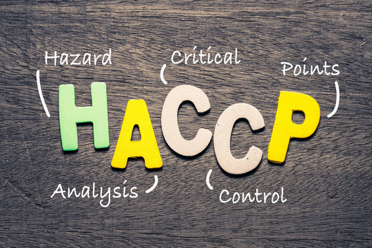 HACCP Wood Letters Acronym