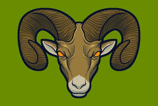 Bighorn Sheep vector for illustration/logo