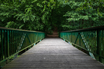 Footbridge over the water leading to the park. Passage over the water in the forest area.