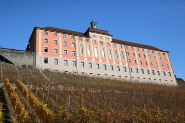 Castle and vineyard of Meersburg in Germany