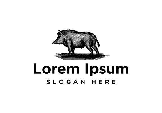 hand drawn pork, wild boar Logo Inspiration isolated on white background