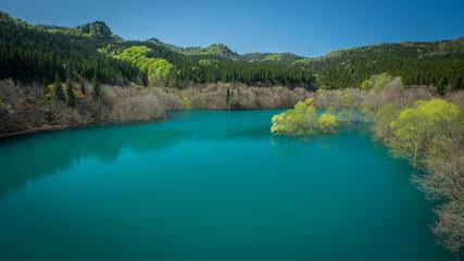 春の宝仙湖