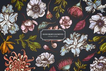 Floral design on dark background with japanese chrysanthemum, blackberry lily, eucalyptus flower, anemone, iris japonica, sakura Wall mural