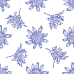 Seamless pattern with hand drawn pastel passion flower