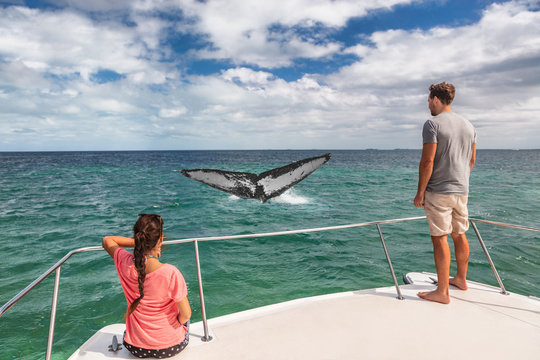 Whale watching boat tour tourists people on ship looking at humpback tail breaching ocean in tropical destination, summer travel vacation. Couple on deck of catamaran.