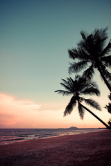 Wall Mural - Silhouette of tropical beach during sunset twilight. seascape of summer beach and palm tree at sunset. vintage color tone