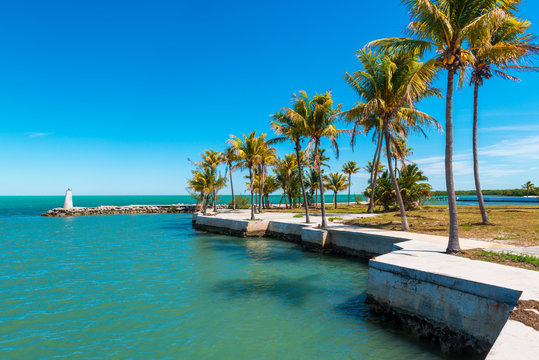 Small Bay in Marathon, Florida Keys, Florida, USA