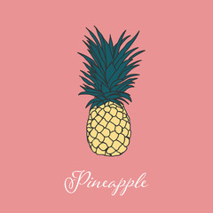 Tropic Pineapple isolated object picture design Summer Wine collection
