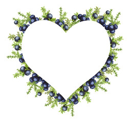 Heart frame with black forest northern berries of the crowberry, painted in watercolor. Ideal for wedding invitations, cards, logos