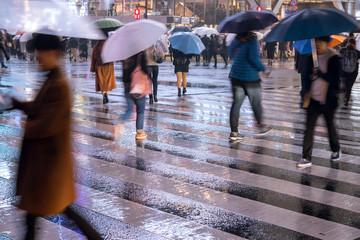 Obraz Rainy night at Shibuya Crossing in Tokyo 雨の夜の渋谷スクランブル交差点 - fototapety do salonu