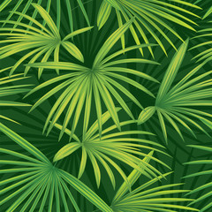 Tropical seamless pattern palm leaves background. Vector set of exotic tropical garden for holiday invitations, greeting card and fashion design.