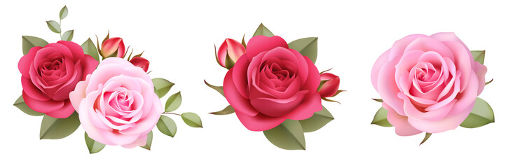Set of decorative pink roses with buds and leaves.Vintage flowers colletion. Vector illustration