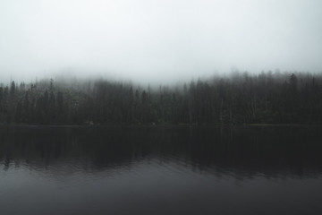 Moody lake and forest in background with solid fog Wall mural