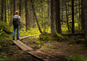 Man walking along a footpath in the forests. Motion blurred.