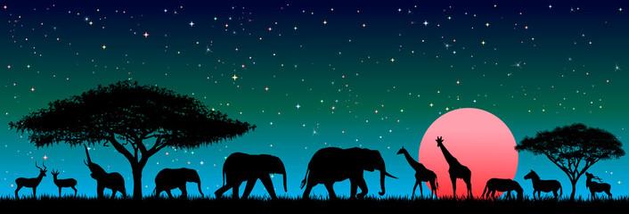 Wild animals in the night African savannah. Silhouettes of wild animals of the African savanna. Wild african animals against the night sky Wall mural