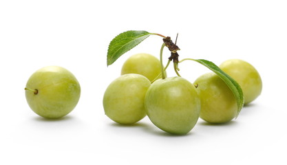 Wild yellow plums with leaves and twigs, isolated on white background
