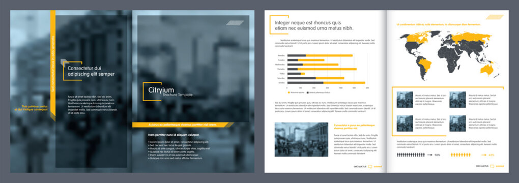 Brochure creative design. Report template and presentations.