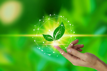 Finger touch with leaf icon over the Network connection on nature background, Technology ecology concept. environment concept Wall mural