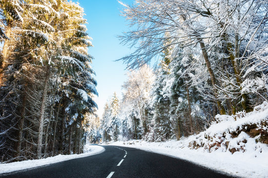 Winter road with snow-covered trees in Alps mountains, France. Beautiful winter landscape
