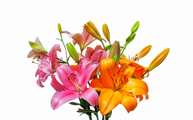 Bouquet of lilies of two varieties in slash and bright orange color Wall mural