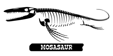 Skeleton of a fossil waterfowl dinosaur. Mosasaur. Vector