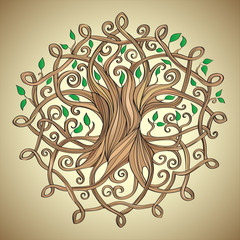 vector illustration of celtic tree of life