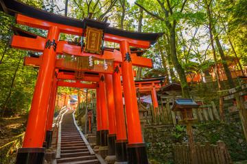 Thousand torii gates, Fushimi Inari Taisha, the most important Shinto shrine, Kyoto, Japan